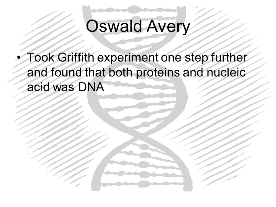 Oswald Avery Took Griffith experiment one step further and found that both proteins and nucleic acid was DNA.