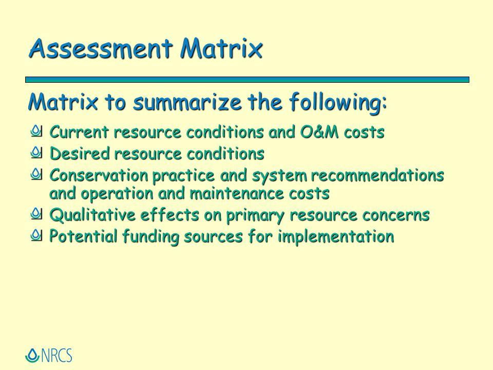 Assessment Matrix Matrix to summarize the following: