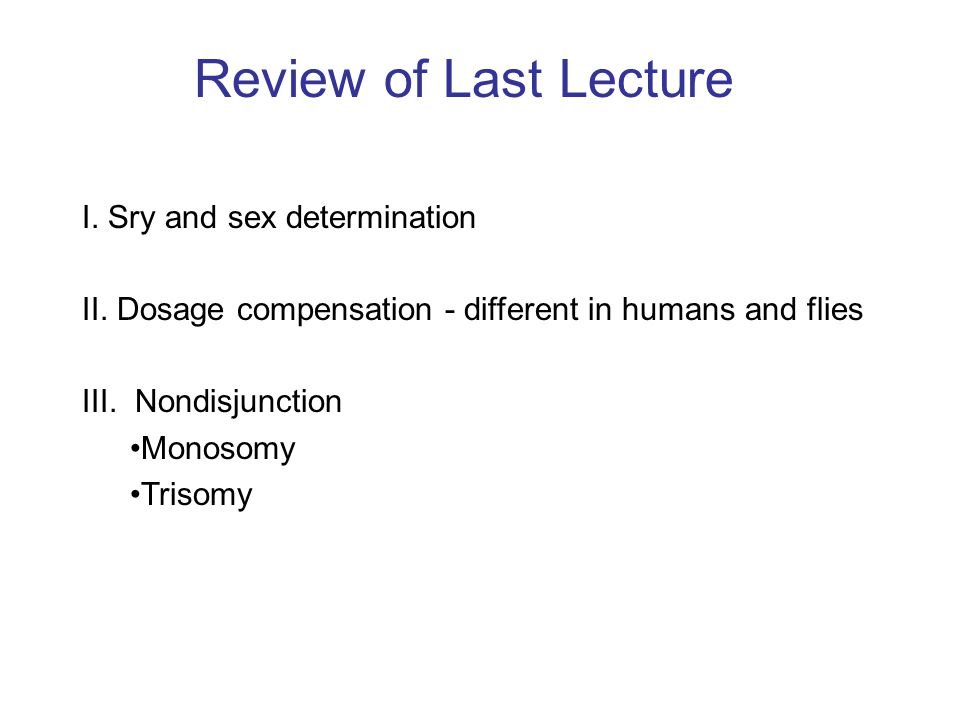 Review of Last Lecture I. Sry and sex determination