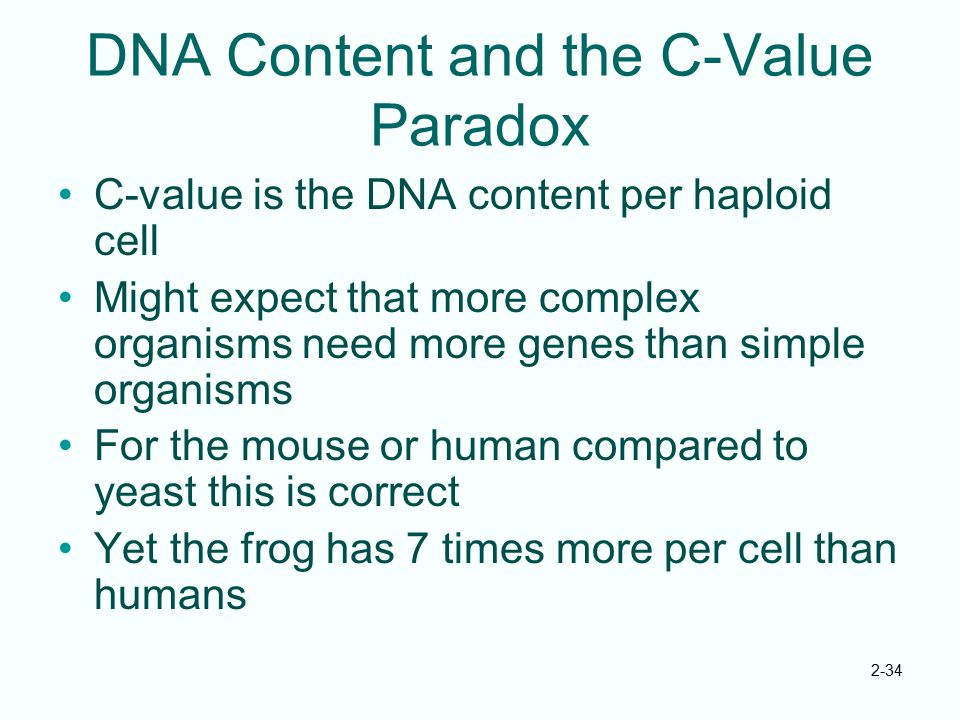 DNA Content and the C-Value Paradox