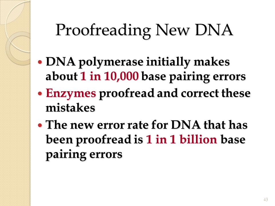 Proofreading New DNA DNA polymerase initially makes about 1 in 10,000 base pairing errors. Enzymes proofread and correct these mistakes.