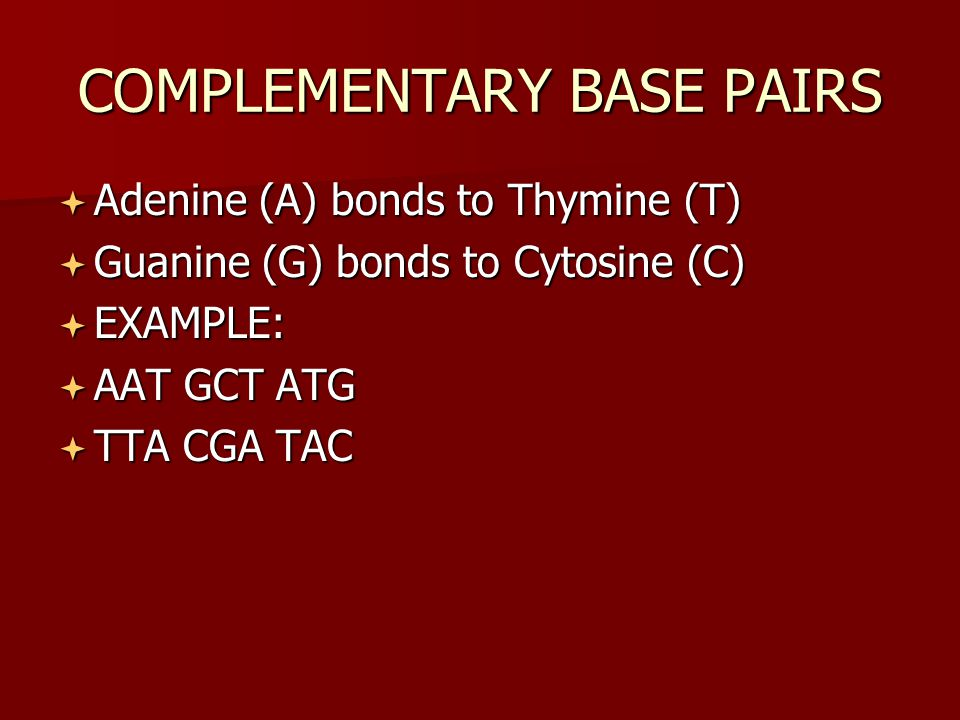 COMPLEMENTARY BASE PAIRS