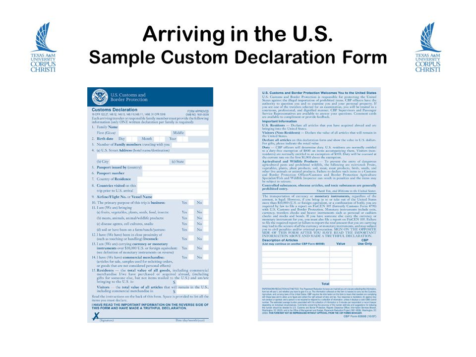 Sample custom declaration form aud value import declaration for articles exempted from declaration charge form 1b application for inclusion in the customs and excise department ced supplier altavistaventures Gallery