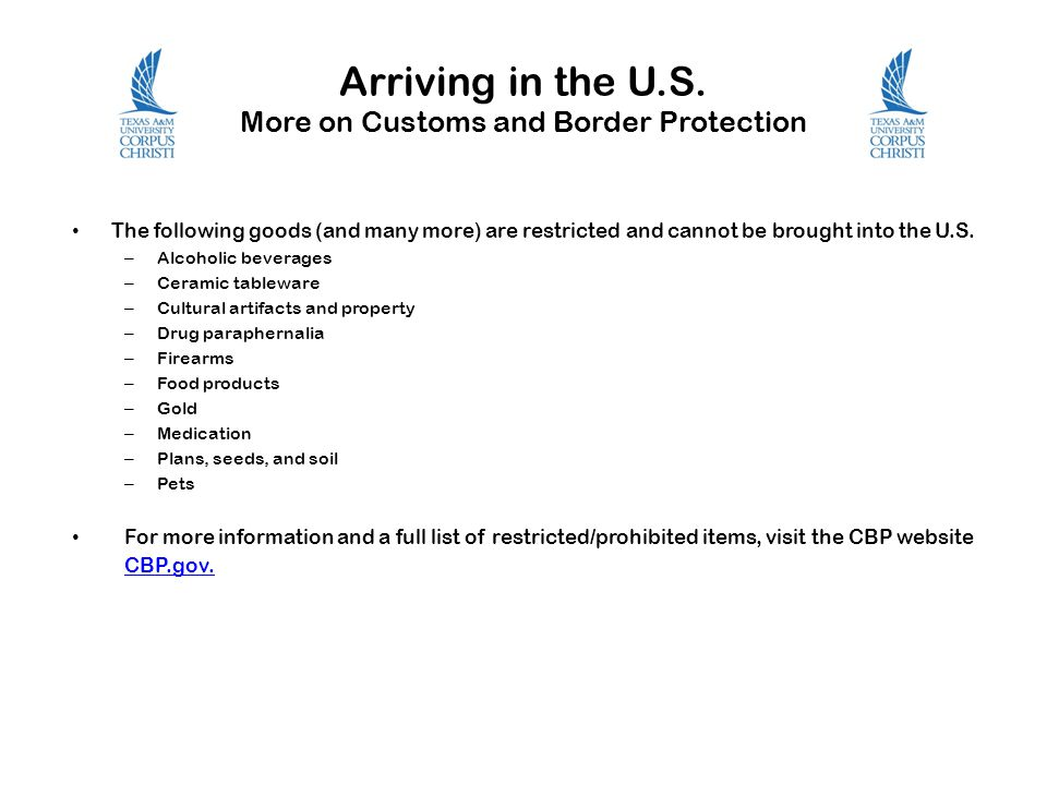 Arriving in the U.S. More on Customs and Border Protection