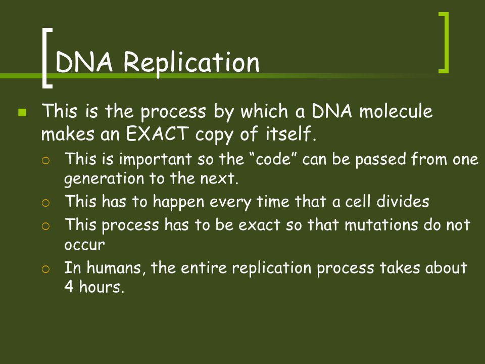 DNA Replication This is the process by which a DNA molecule makes an EXACT copy of itself.