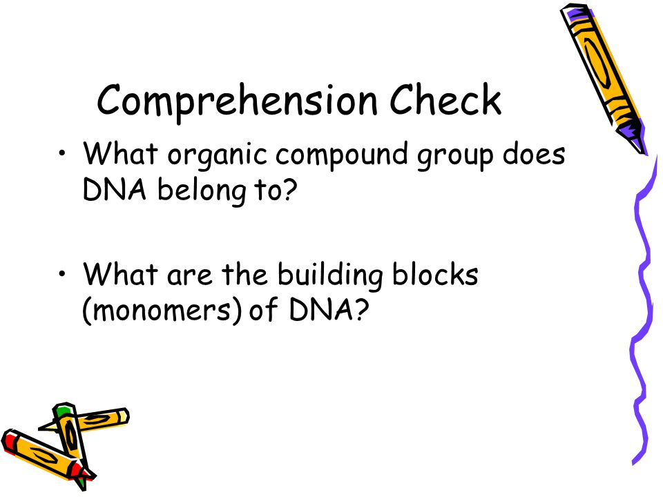 Comprehension Check What organic compound group does DNA belong to