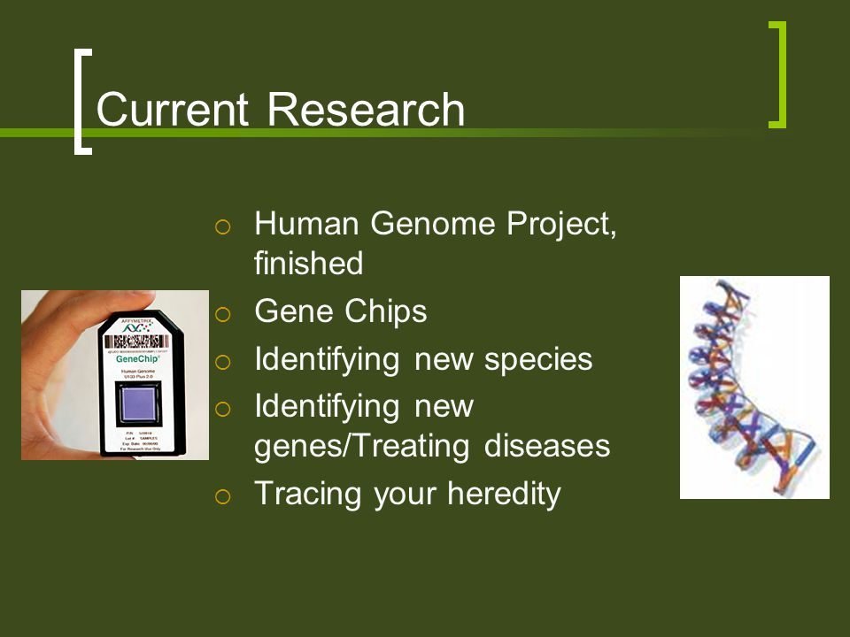Current Research Human Genome Project, finished Gene Chips