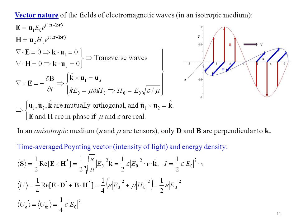 Vector nature of the fields of electromagnetic waves (in an isotropic medium):