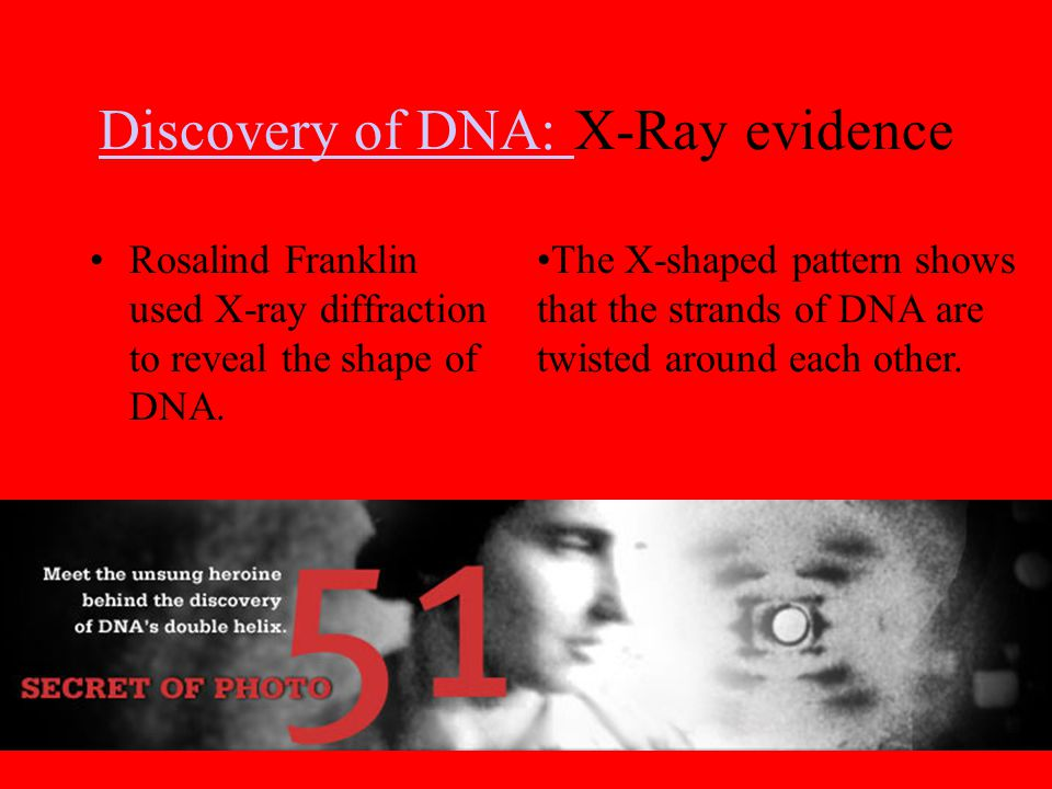 Discovery of DNA: X-Ray evidence