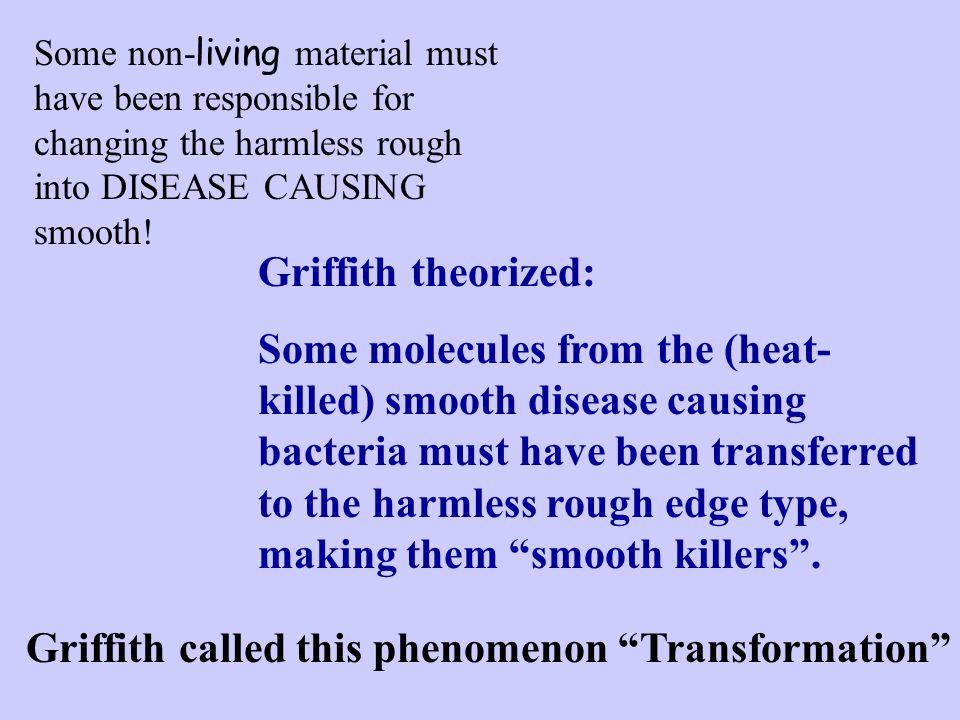 Griffith called this phenomenon Transformation