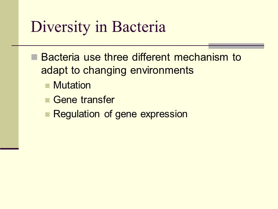 Diversity in Bacteria Bacteria use three different mechanism to adapt to changing environments. Mutation.