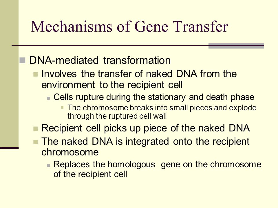 Mechanisms of Gene Transfer