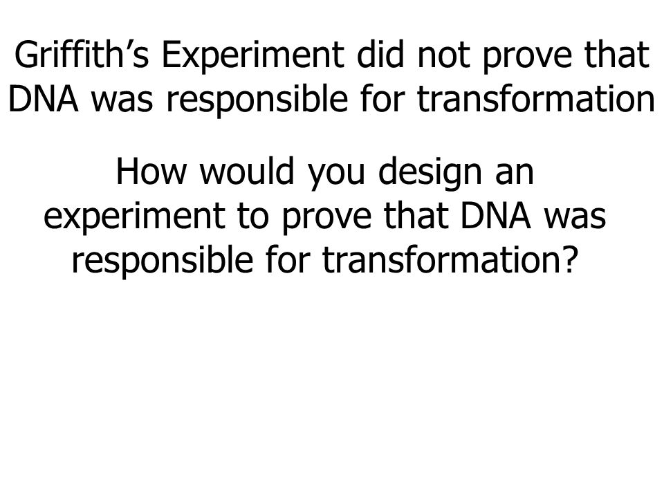 Griffith's Experiment did not prove that DNA was responsible for transformation