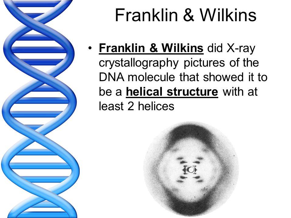 Franklin & Wilkins