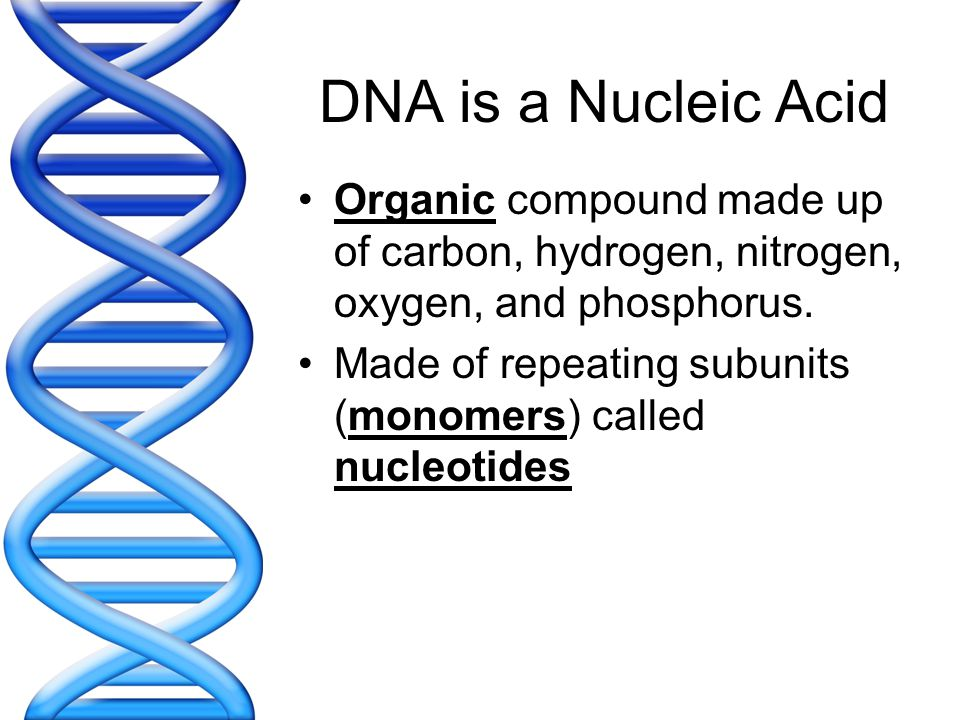 DNA is a Nucleic Acid Organic compound made up of carbon, hydrogen, nitrogen, oxygen, and phosphorus.