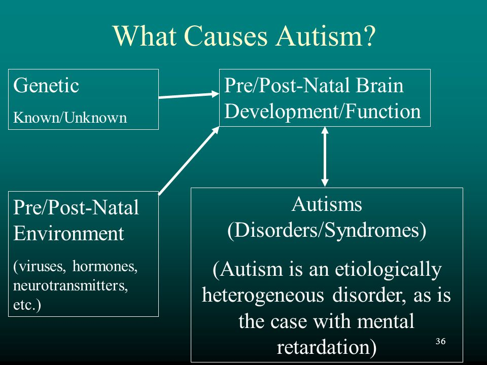 Autisms (Disorders/Syndromes)
