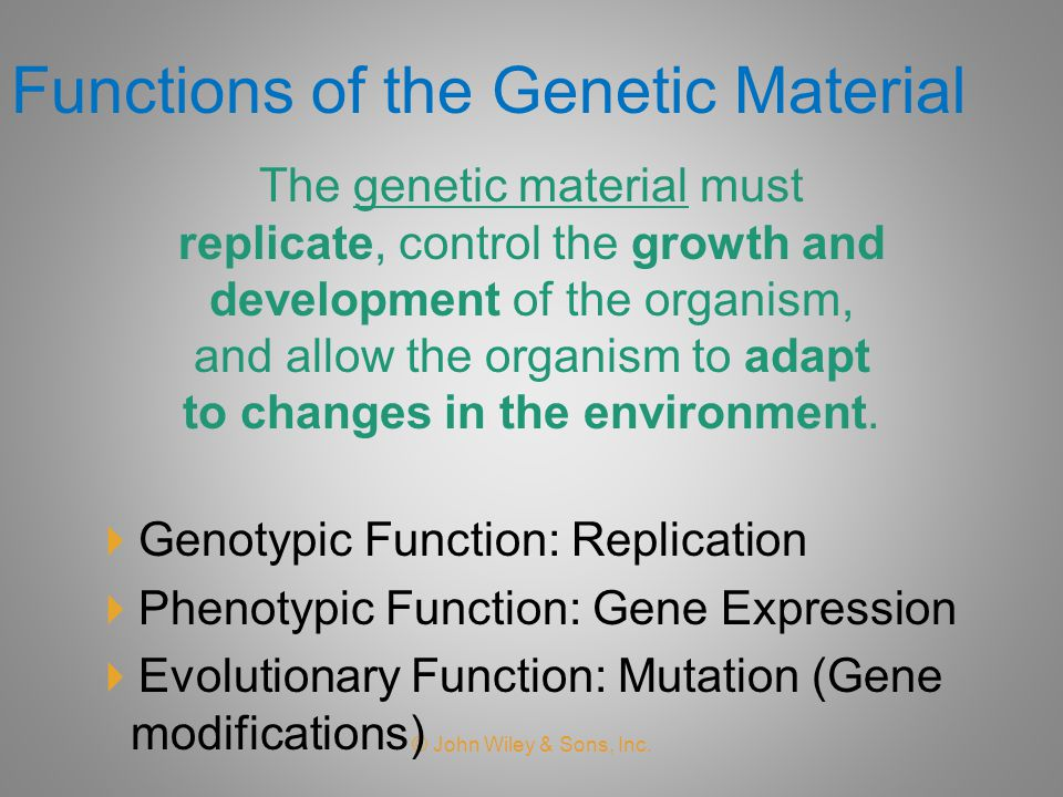 Functions of the Genetic Material