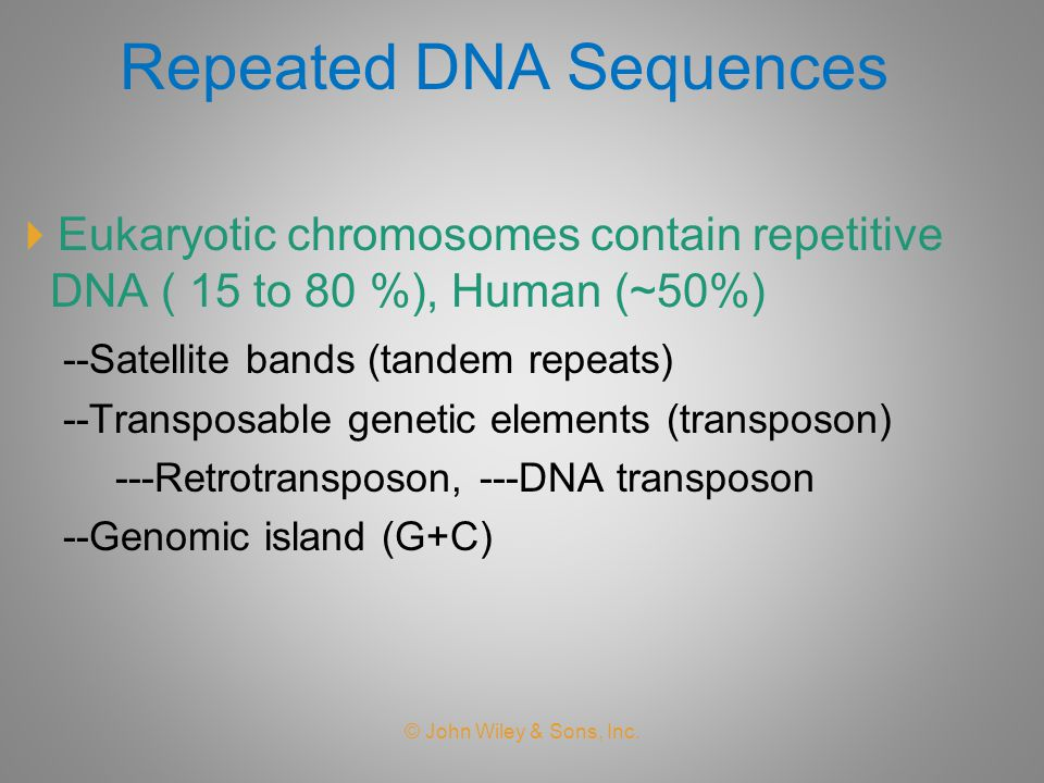 Repeated DNA Sequences