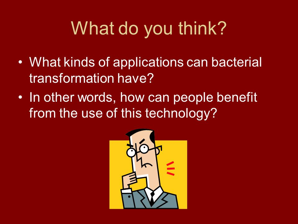 What do you think What kinds of applications can bacterial transformation have