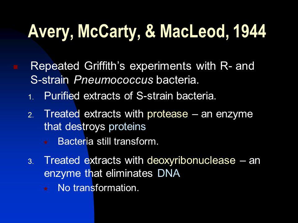 Avery, McCarty, & MacLeod, 1944