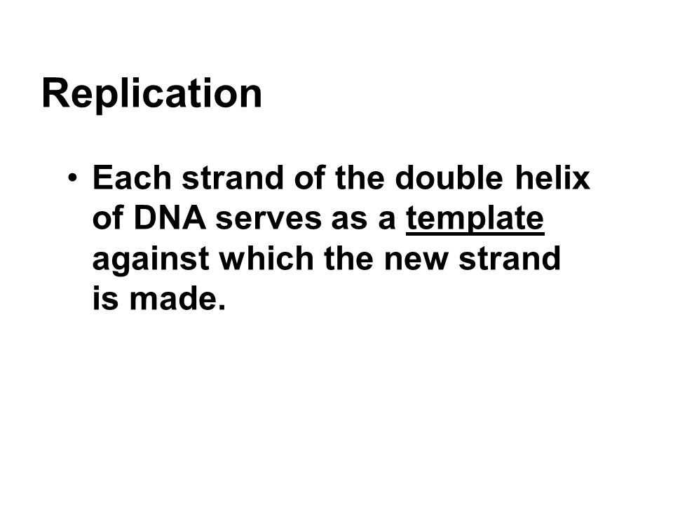 Replication Each strand of the double helix of DNA serves as a template against which the new strand is made.