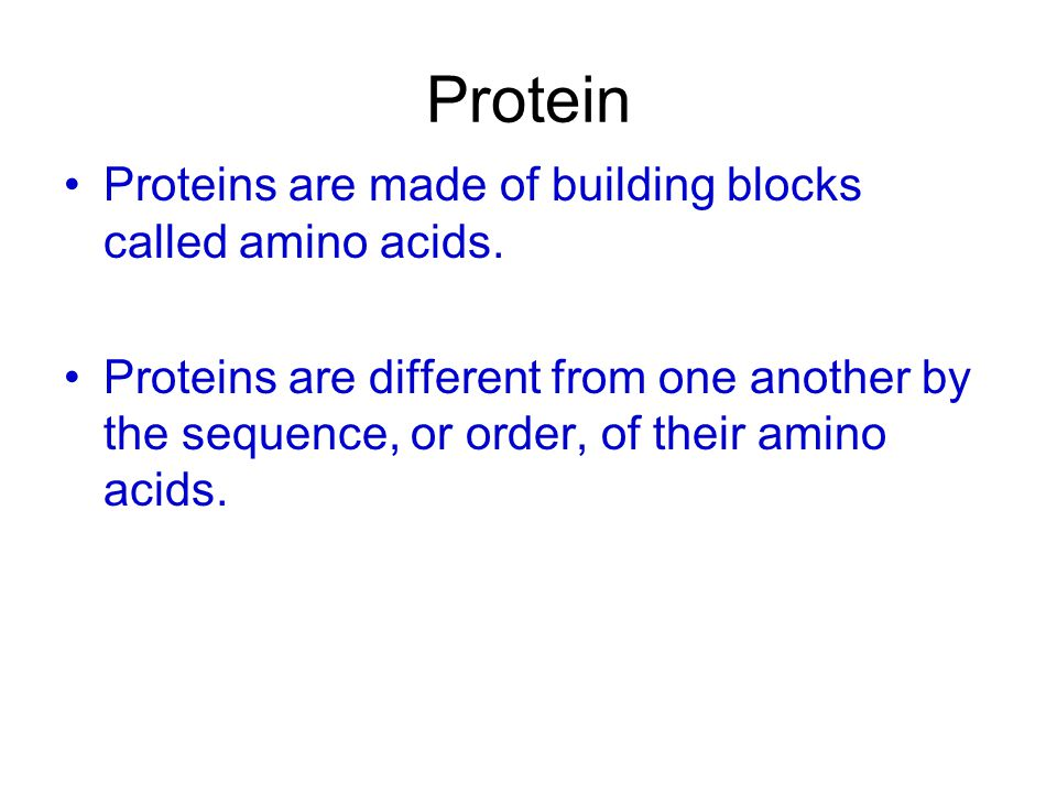 Protein Proteins are made of building blocks called amino acids.