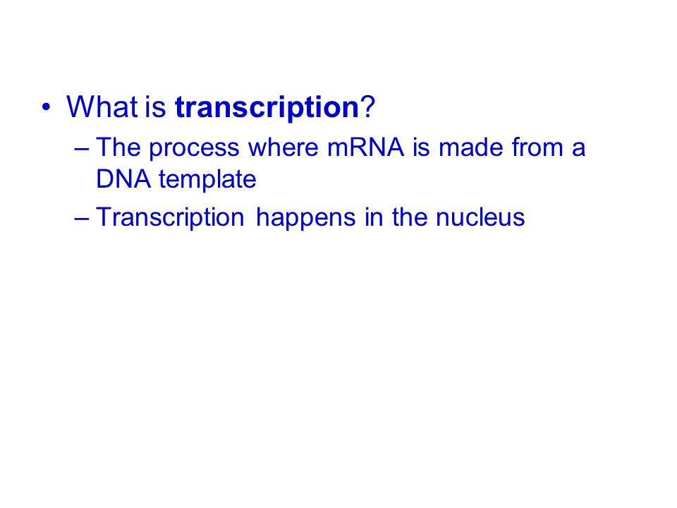What is transcription. The process where mRNA is made from a DNA template.