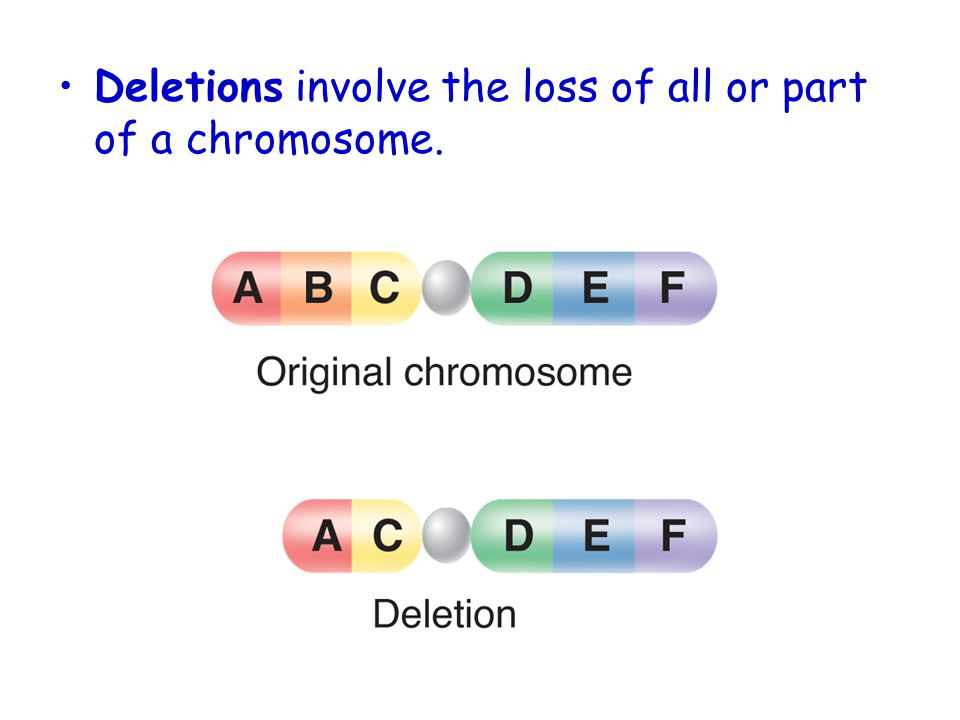 Deletions involve the loss of all or part of a chromosome.