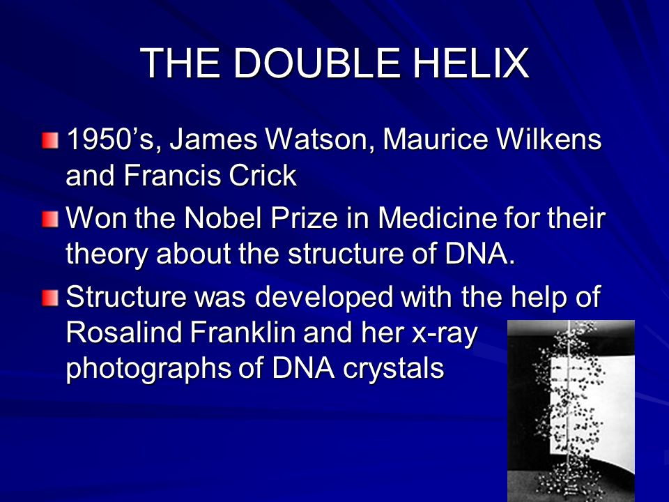 THE DOUBLE HELIX 1950's, James Watson, Maurice Wilkens and Francis Crick.