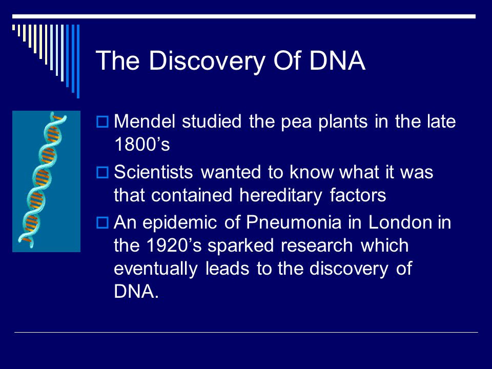 The Discovery Of DNA Mendel studied the pea plants in the late 1800's