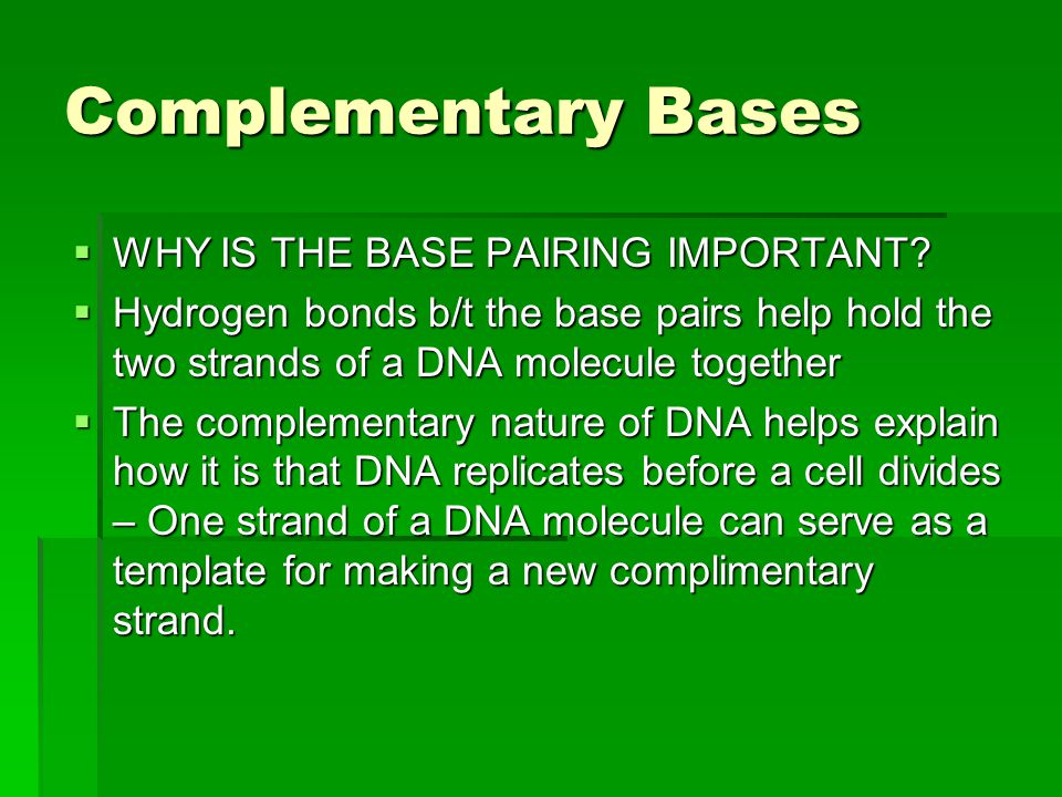 Complementary Bases WHY IS THE BASE PAIRING IMPORTANT