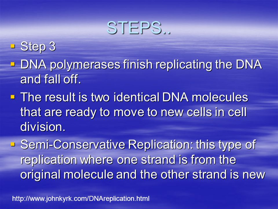 STEPS.. Step 3. DNA polymerases finish replicating the DNA and fall off.