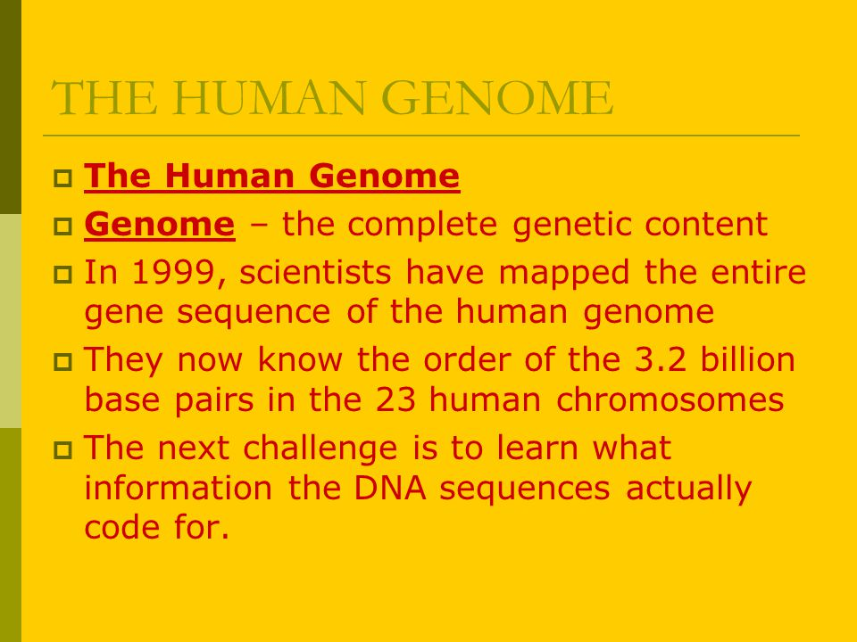 THE HUMAN GENOME The Human Genome