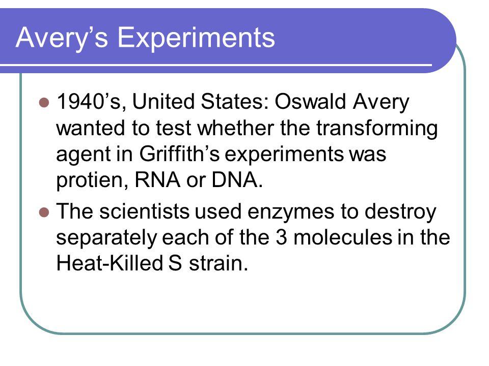 Avery's Experiments