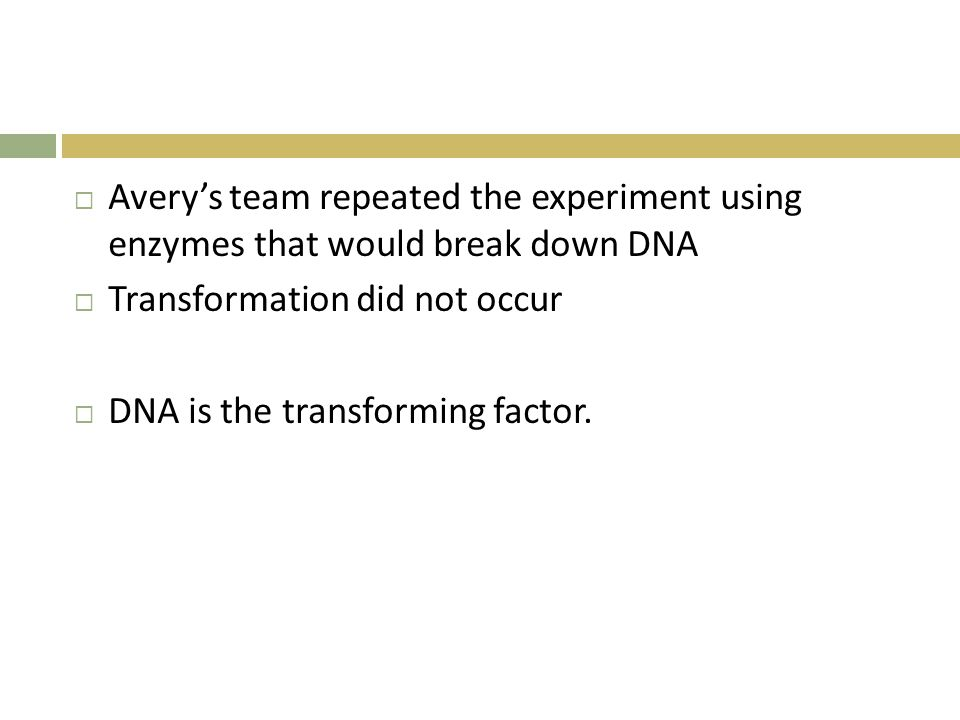 Avery's team repeated the experiment using enzymes that would break down DNA