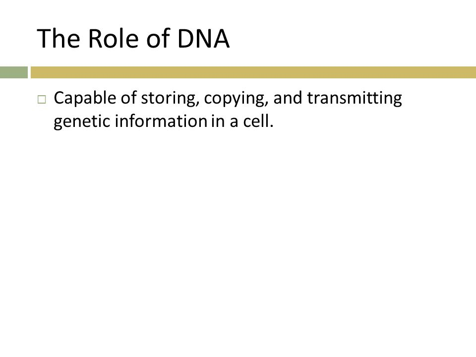 The Role of DNA Capable of storing, copying, and transmitting genetic information in a cell.