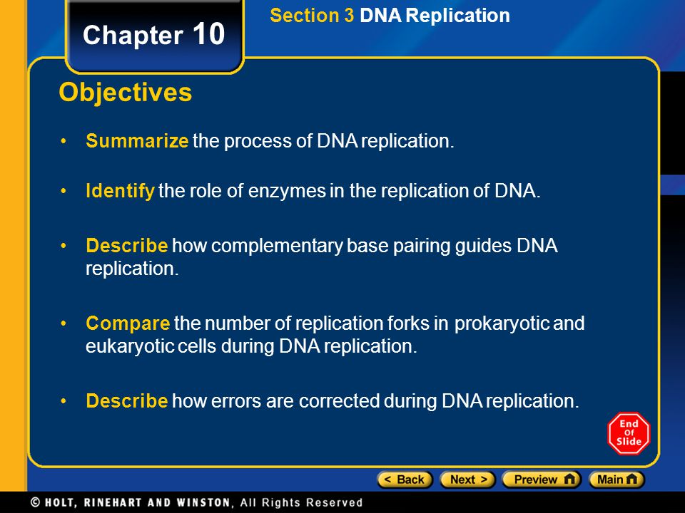 Chapter 10 Objectives Section 3 DNA Replication