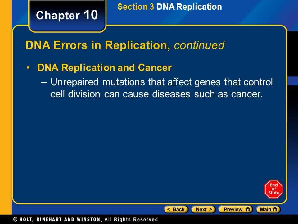 DNA Errors in Replication, continued