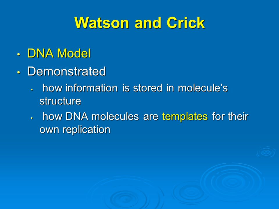 Watson and Crick DNA Model Demonstrated