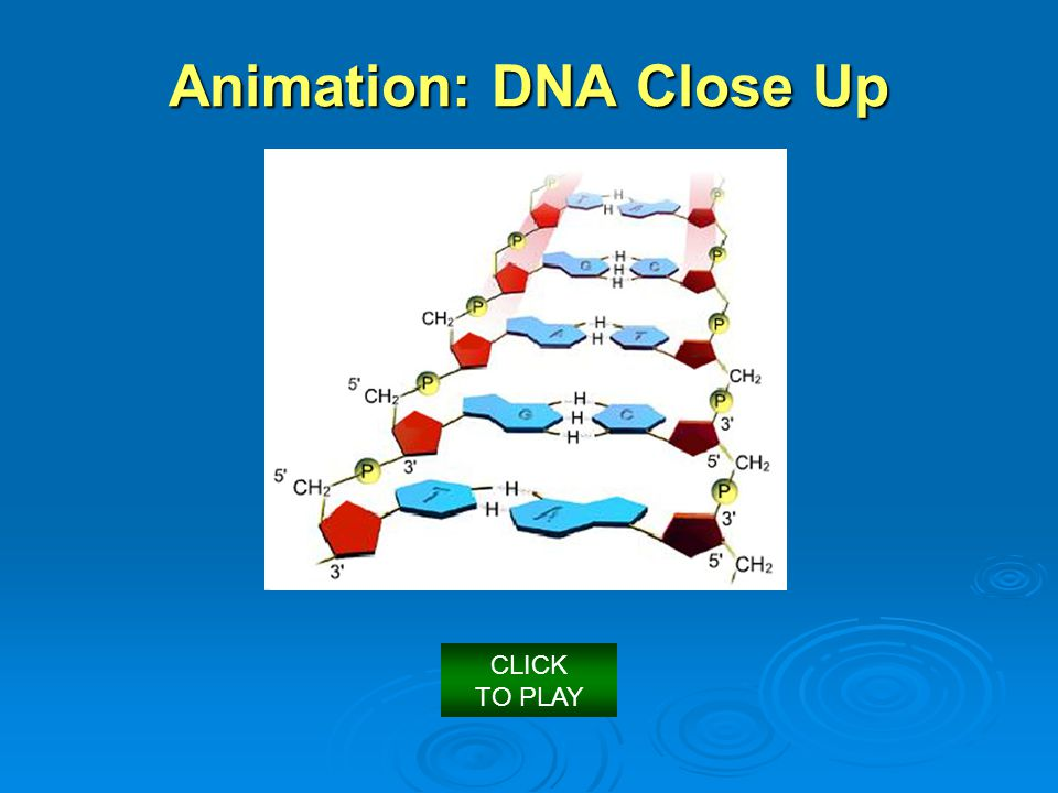 Animation: DNA Close Up