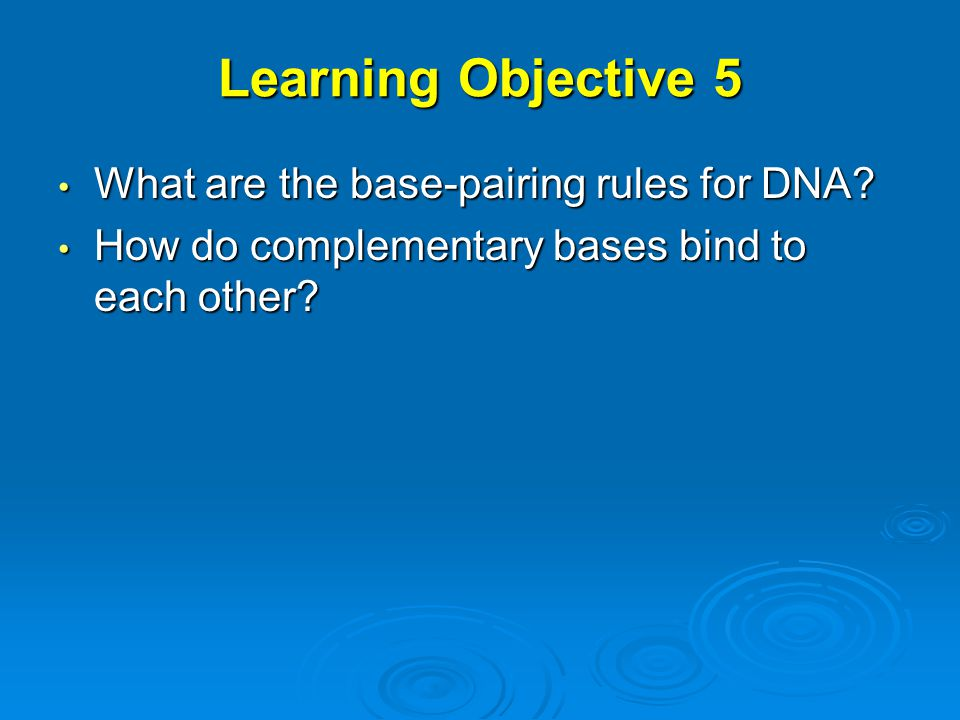 Learning Objective 5 What are the base-pairing rules for DNA