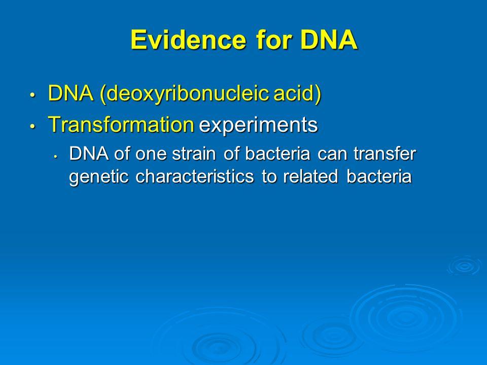 Evidence for DNA DNA (deoxyribonucleic acid)