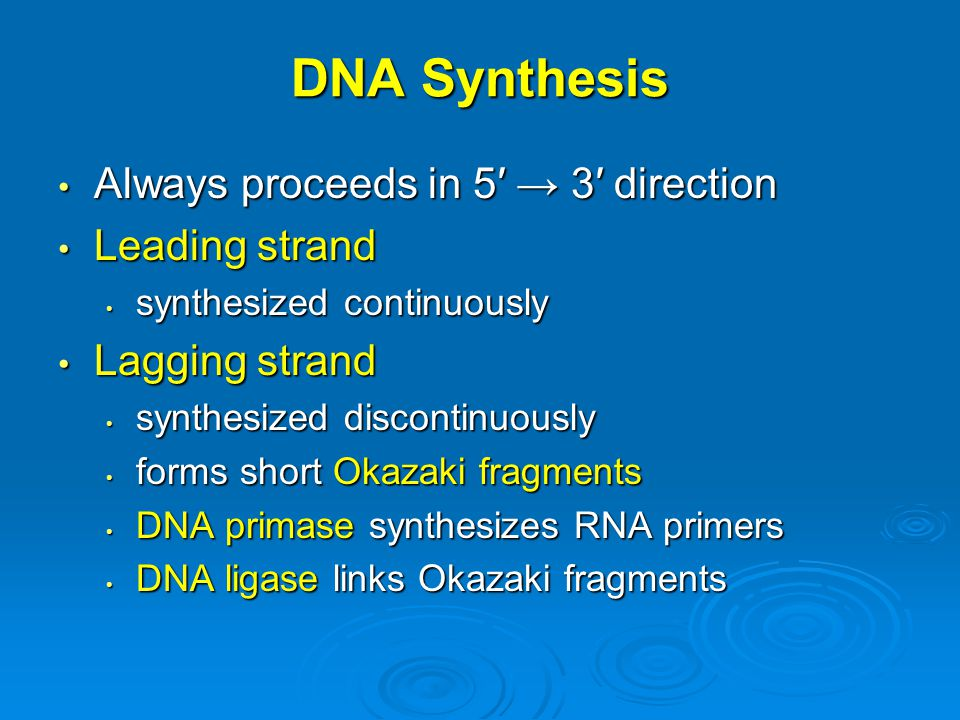 DNA Synthesis Always proceeds in 5′ → 3′ direction Leading strand