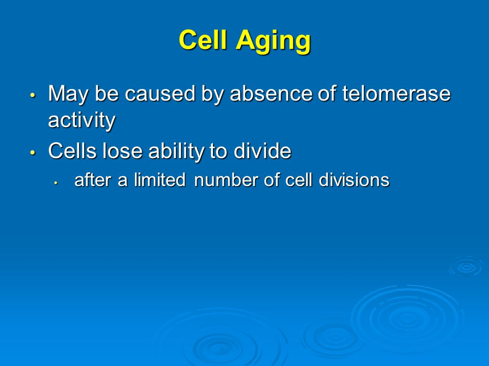 Cell Aging May be caused by absence of telomerase activity