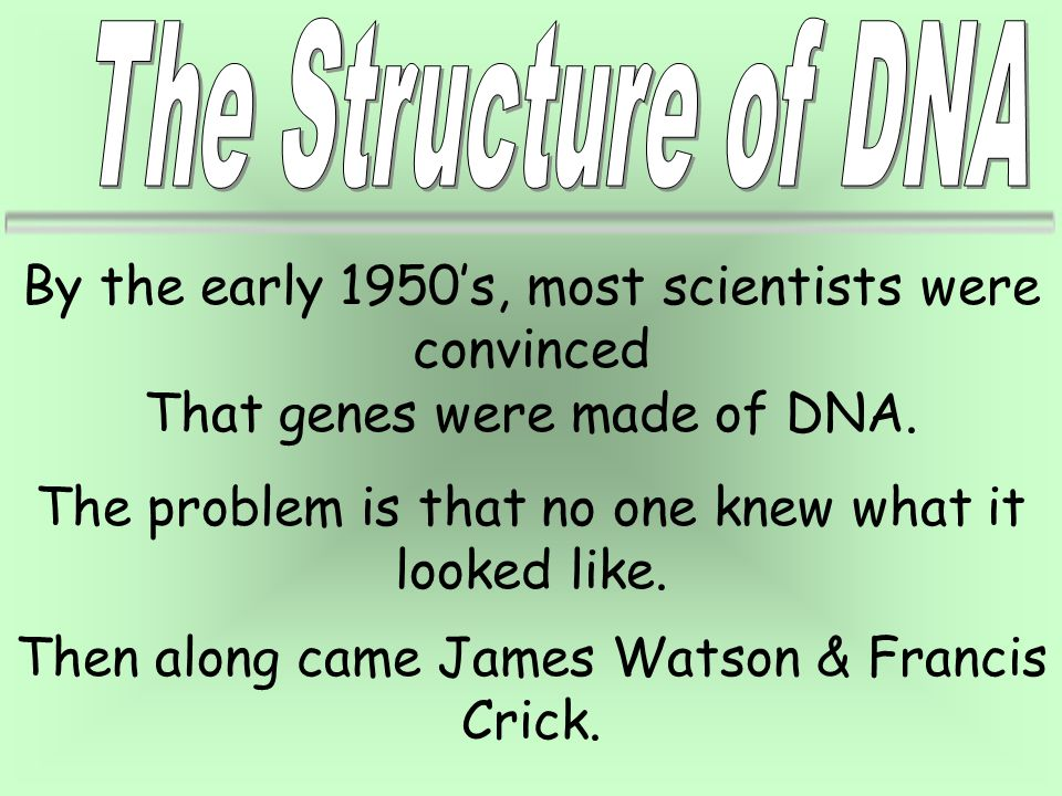 By the early 1950's, most scientists were convinced