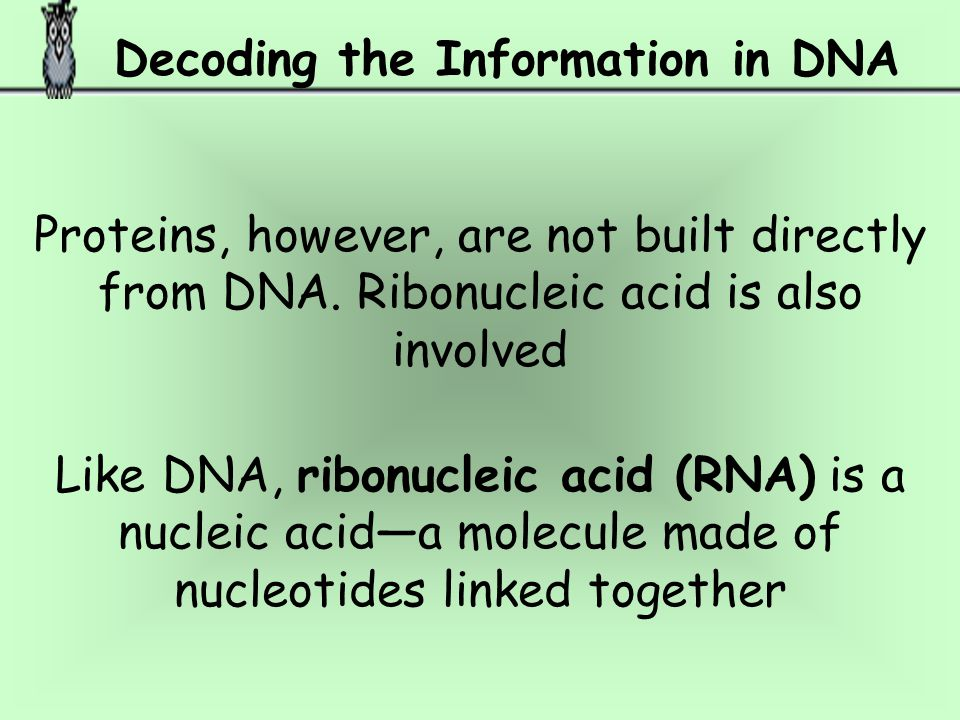 Decoding the Information in DNA