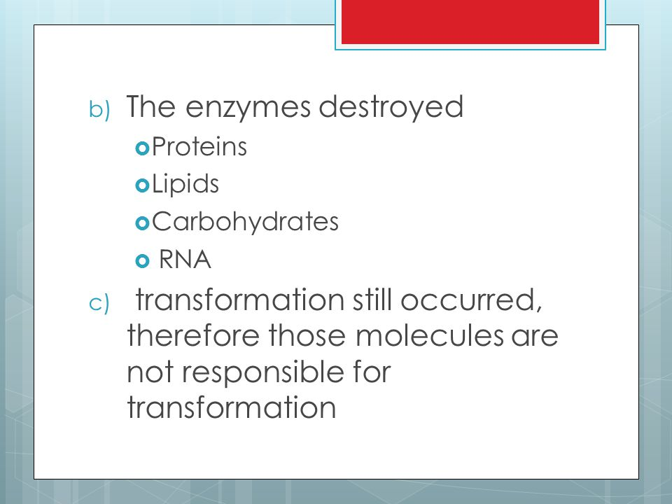 The enzymes destroyed Proteins. Lipids. Carbohydrates. RNA.