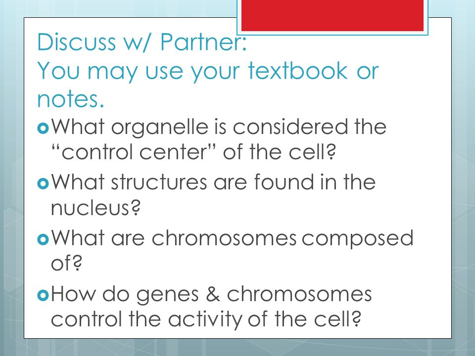 Discuss w/ Partner: You may use your textbook or notes.