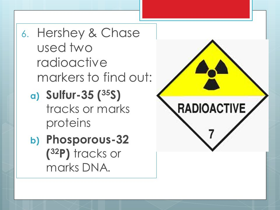 Hershey & Chase used two radioactive markers to find out: