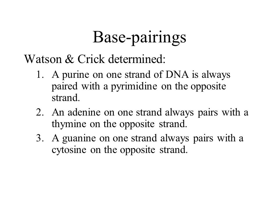 Base-pairings Watson & Crick determined: